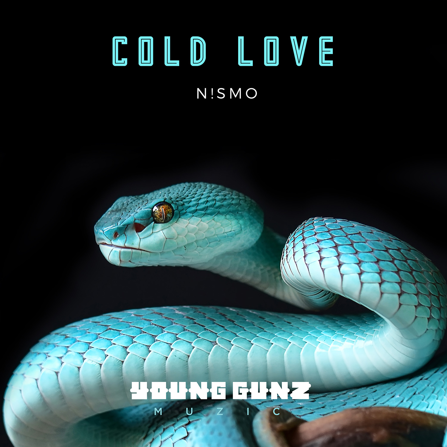 N!smo_coldlove_cover_01